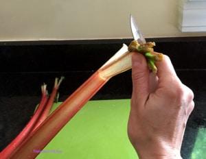 RhubarbPie3